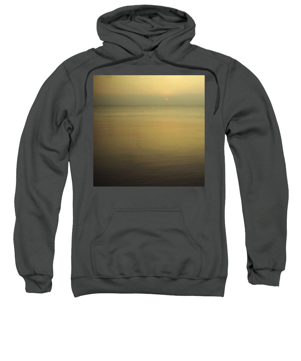 Blur Sweatshirt featuring the photograph Tell Me If You Know All This by Dana DiPasquale