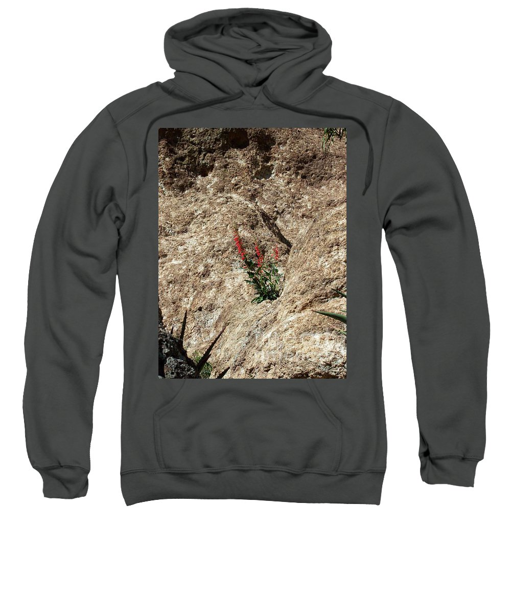 Wildflowers; Flowers Sweatshirt featuring the photograph Tenacity by Kathy McClure