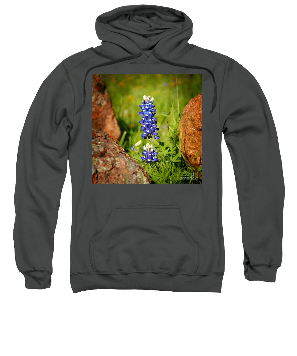 Landscape Sweatshirt featuring the photograph Texas Bluebonnet by Jon Holiday