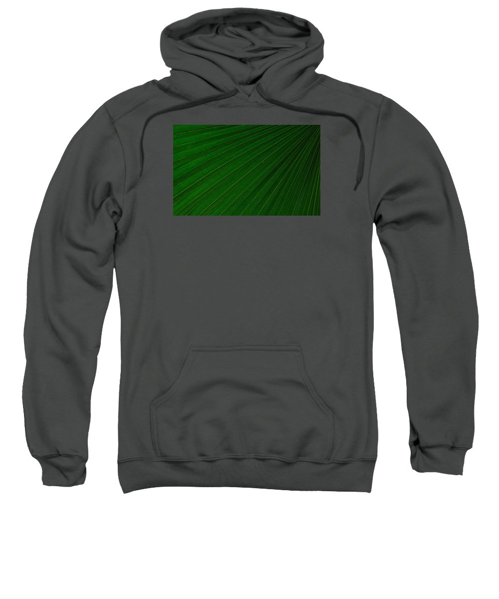 Palm Leaf Sweatshirt featuring the photograph Texturized Palm Leaf by Tikvah's Hope