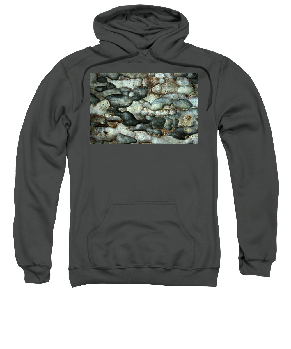 Tree Bark Sweatshirt featuring the photograph Thai Mimosa by Jennifer Bright