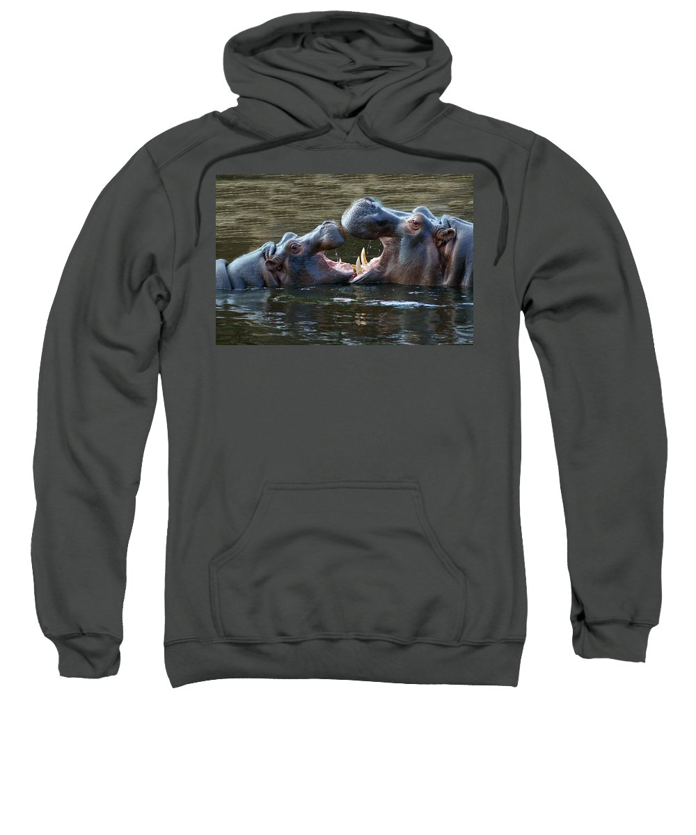 Werribee Sweatshirt featuring the photograph That Was Funny Mum by Kathryn Potempski