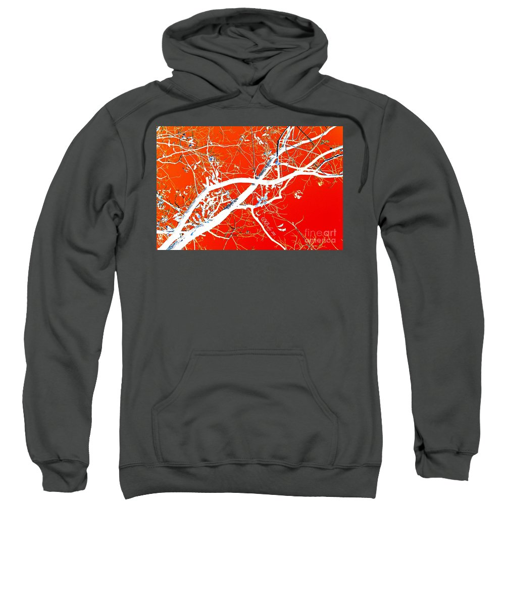 Tree Sweatshirt featuring the photograph The Asian Tree by Donna Bentley