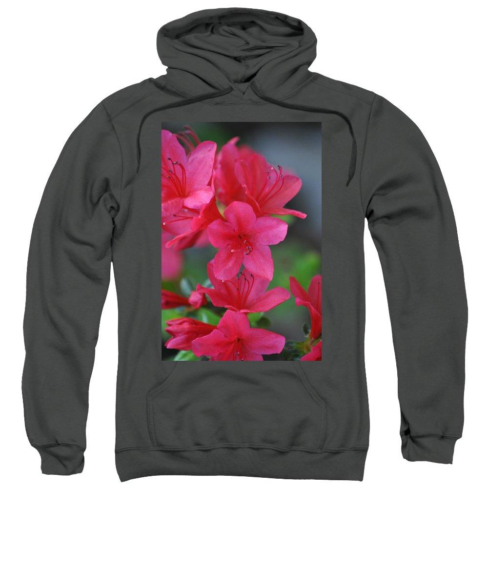 Azalea Sweatshirt featuring the photograph The Azalea by Eric Liller