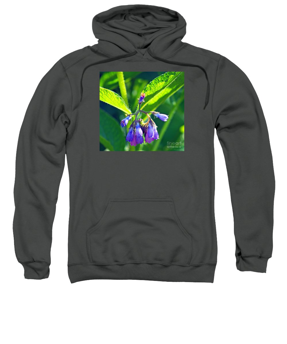 Fine Art Photography Sweatshirt featuring the photograph The Bells Of Ireland by Patricia Griffin Brett