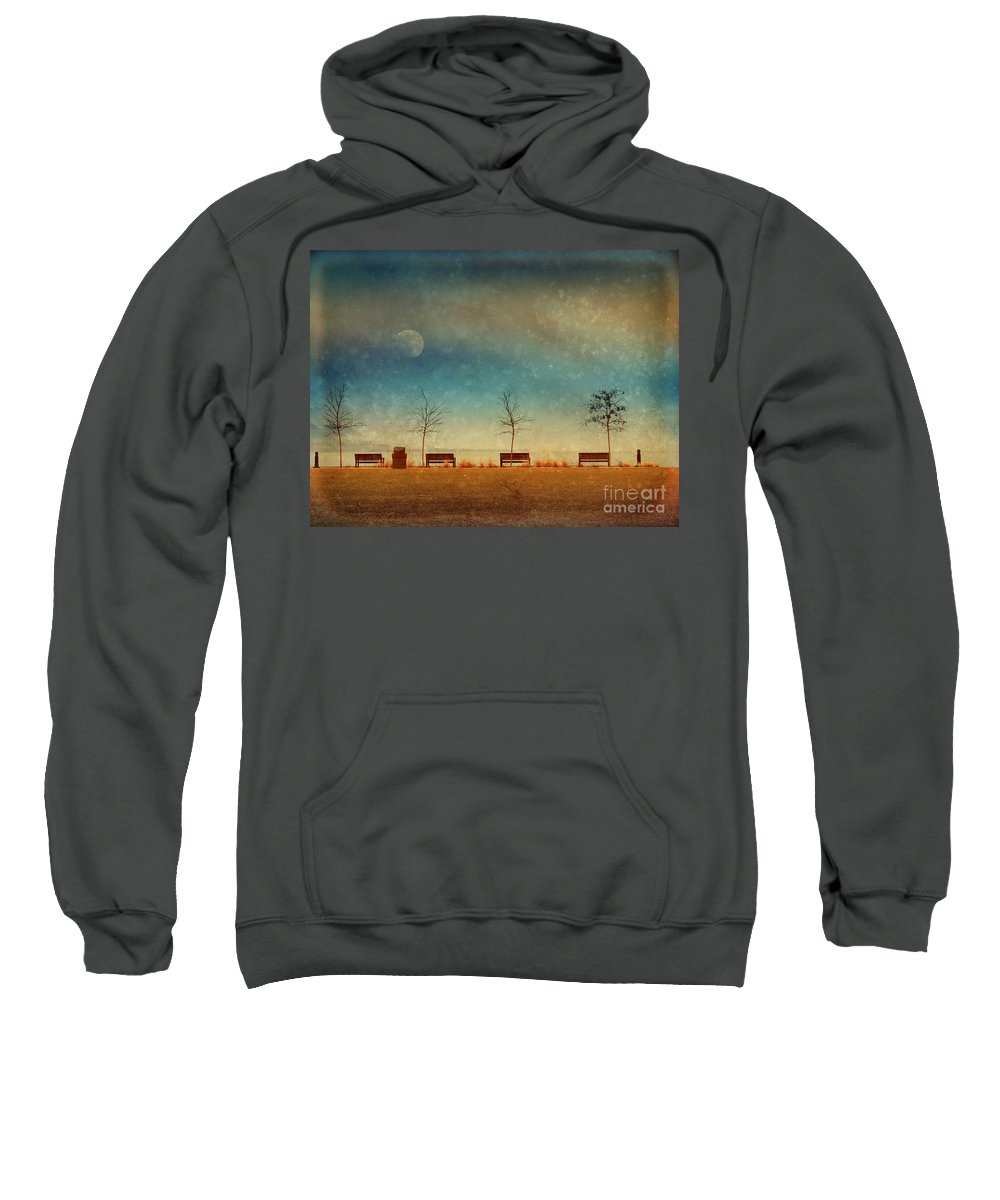 Moon Sweatshirt featuring the photograph The Benches By The Moon by Tara Turner