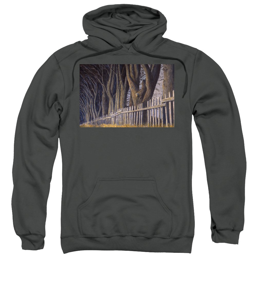 Bird House Sweatshirt featuring the painting The Bird House by Jerry McElroy