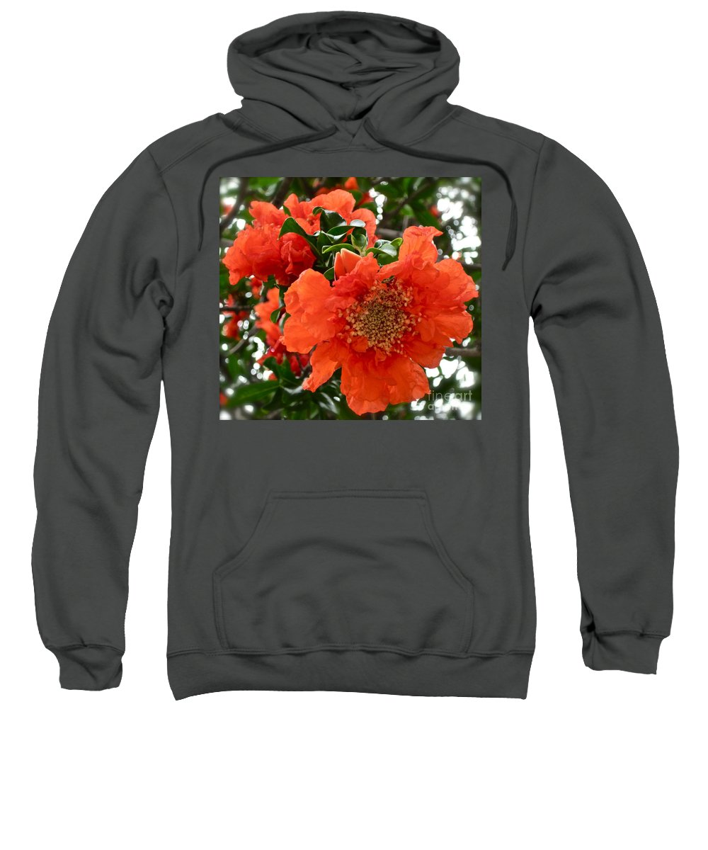 Orange Flower Sweatshirt featuring the photograph The Colour Orange by Gwyn Newcombe