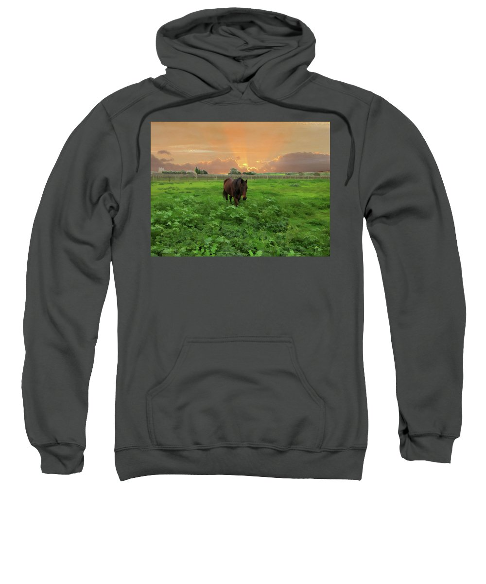 Horse Sweatshirt featuring the photograph The Crack Of Dawn by Douglas Barnard