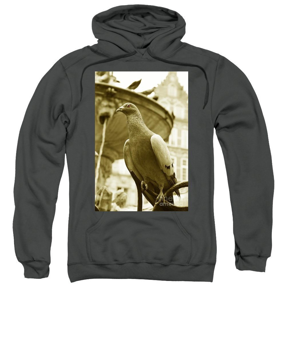 Dove Fountain Water Bird Birds White Gray Sepia Eye Architecture Water City Danzig Old Sweatshirt featuring the photograph The Dove by Steve K