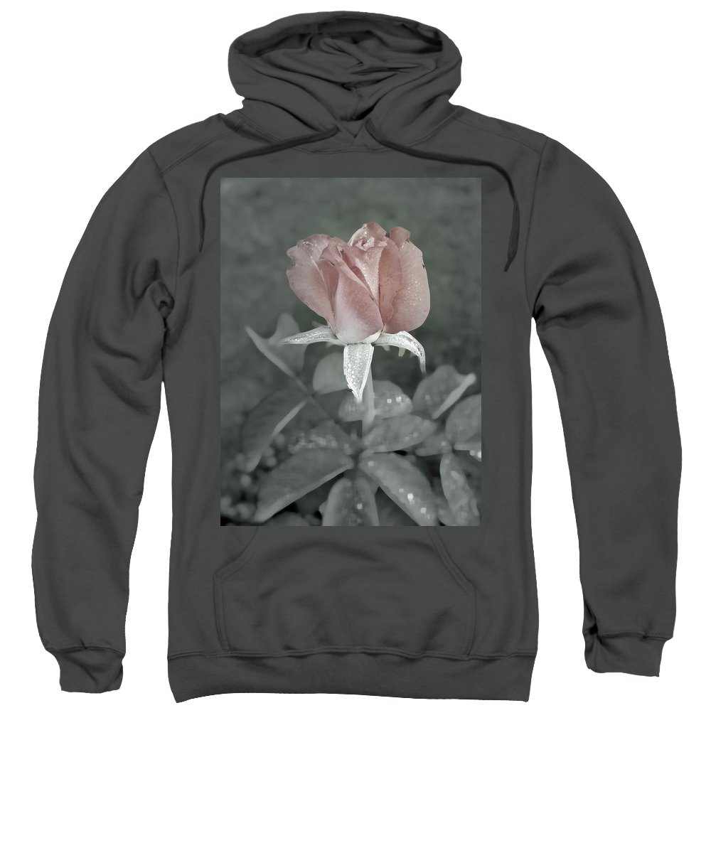 Rose Sweatshirt featuring the digital art The Faded Rose by Robert Meanor