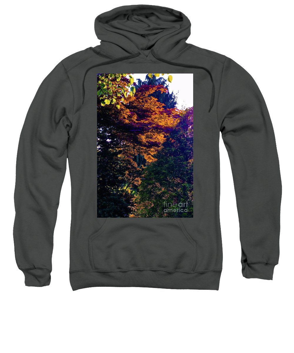 Forest Sweatshirt featuring the mixed media The Forest At Dusk by Glenn Wilson Boerstler II