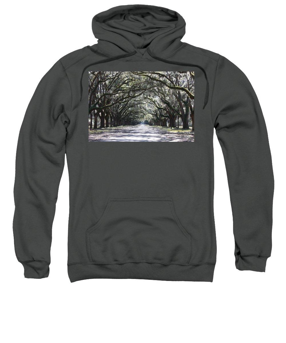 Landscape Sweatshirt featuring the photograph The Grand Lane by Carol Groenen