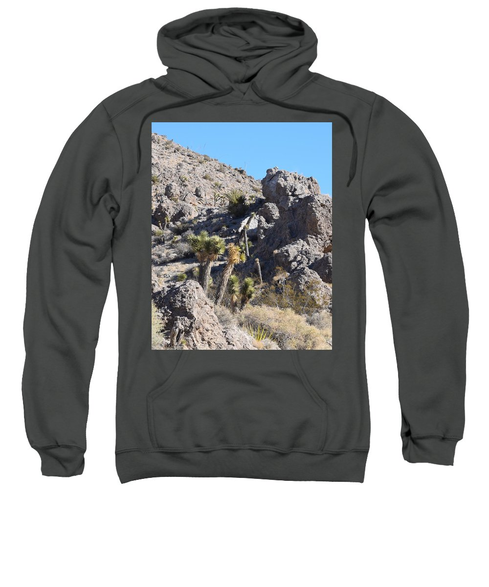 Illusions Sweatshirt featuring the photograph Rocky The Gentle Giant by John Glass