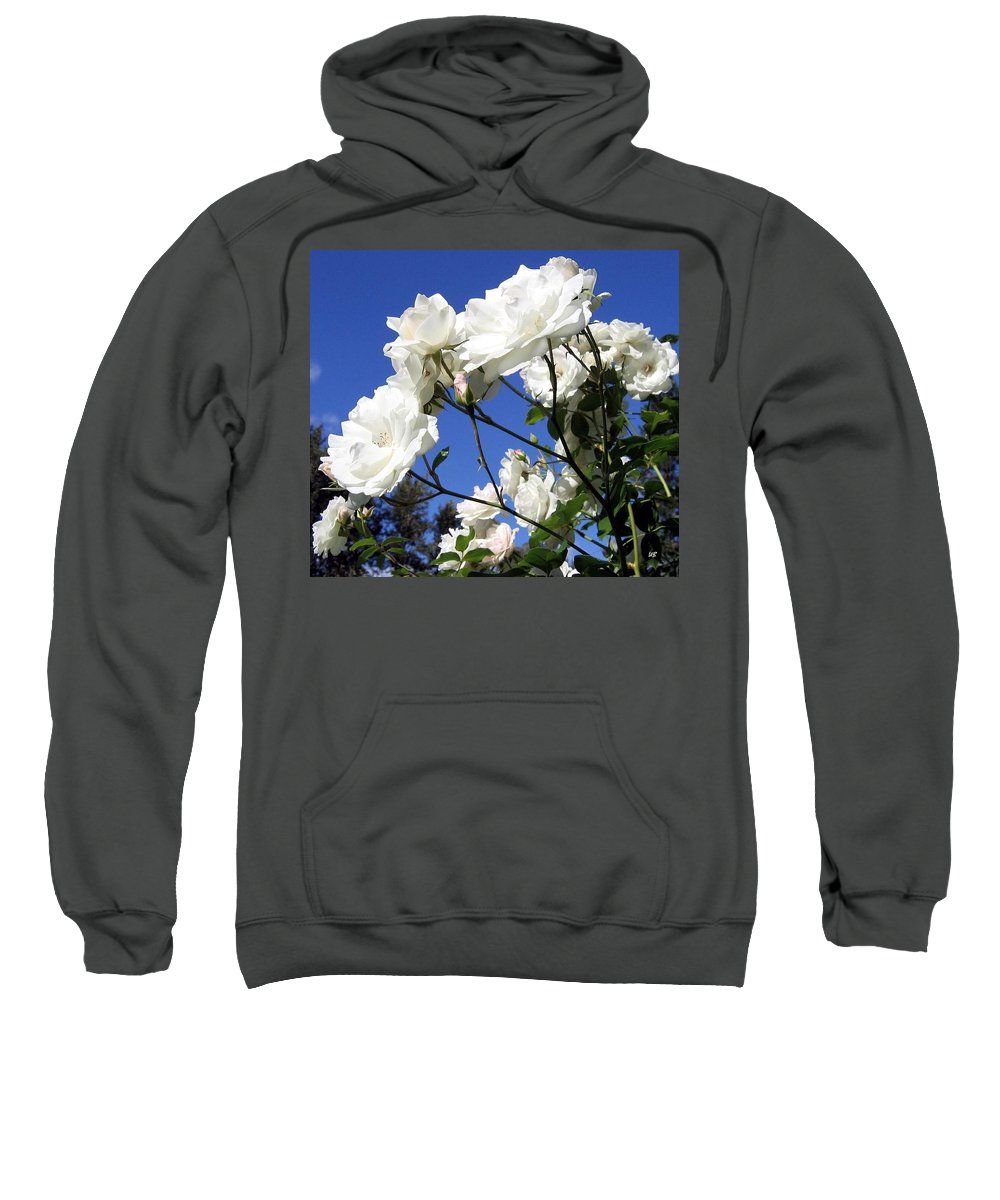 Roses Sweatshirt featuring the photograph The Iceberg Rose by Will Borden