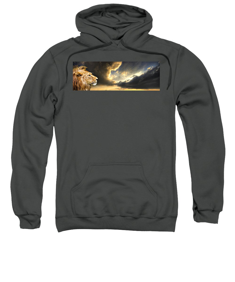 Lion Sweatshirt featuring the photograph The King Of His Domain by Meirion Matthias