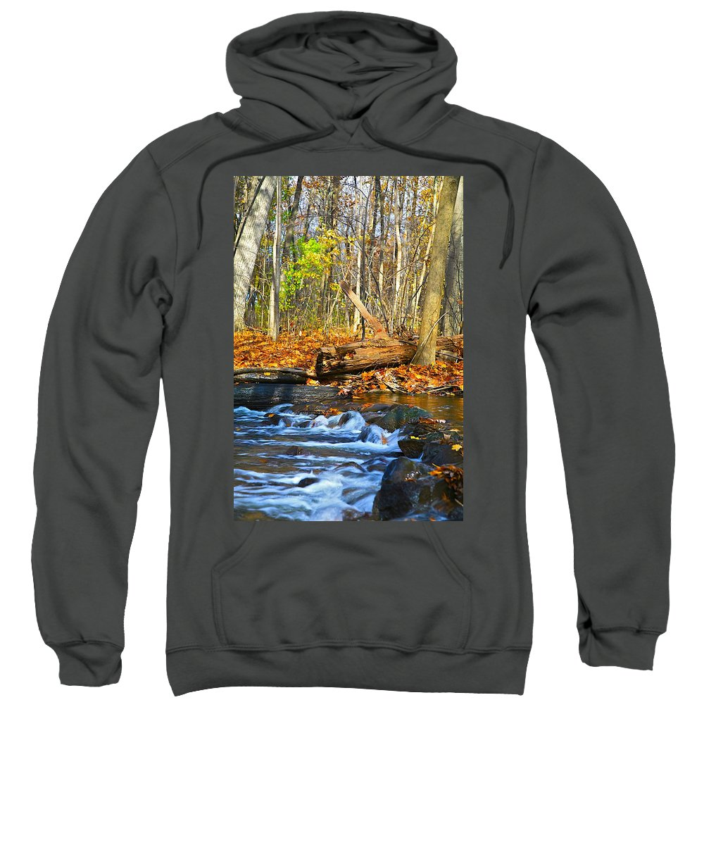 Fall Sweatshirt featuring the photograph The Last Of The Fall Color by Robert Pearson