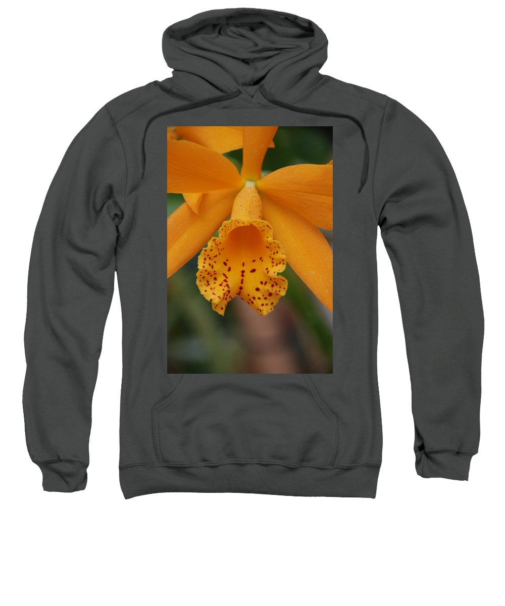 Yellow Sweatshirt featuring the photograph The Orange Orchid by Rob Hans