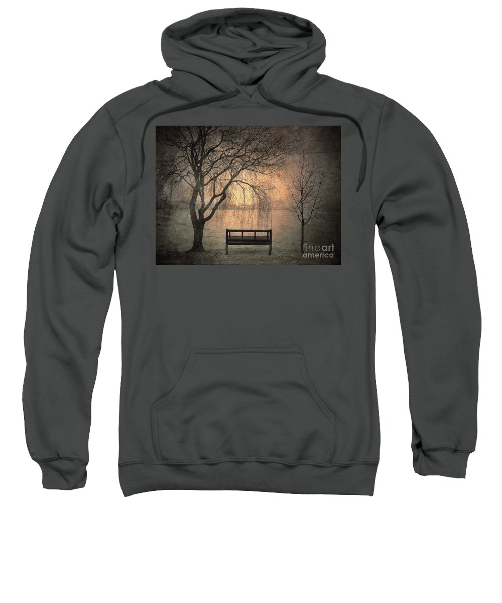 Bench Sweatshirt featuring the photograph The Outlook by Tara Turner