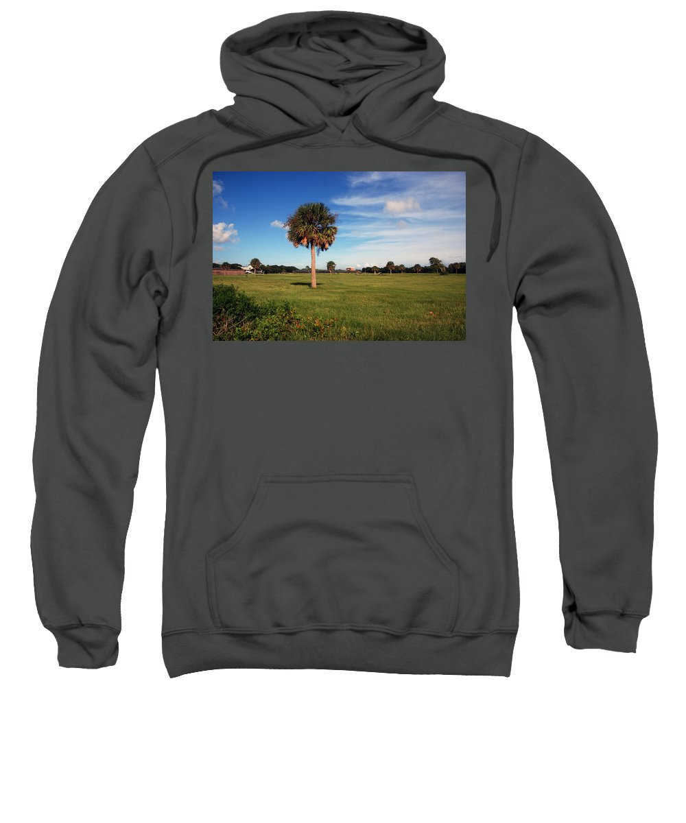 Photography Sweatshirt featuring the photograph The Palmetto Tree by Susanne Van Hulst
