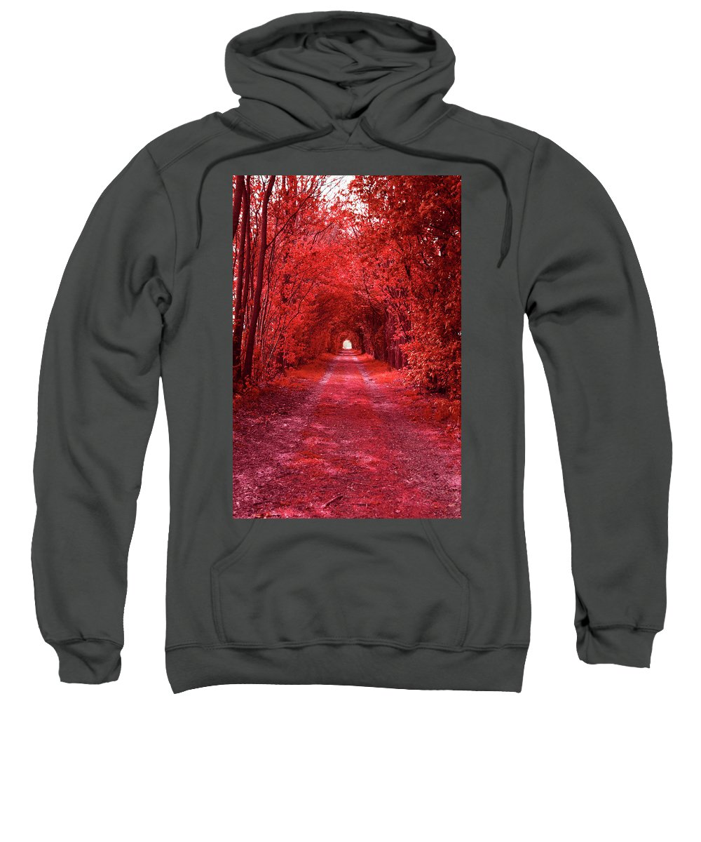 Red Sweatshirt featuring the photograph The Path 2 by Steve K