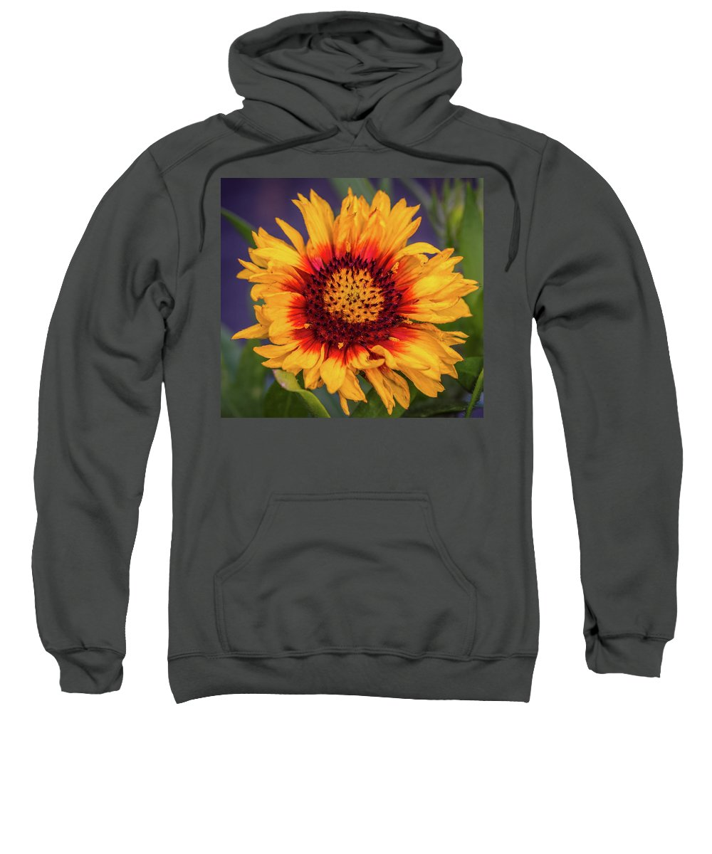Flower Floral Sweatshirt featuring the photograph The Perfect Day by Cathy Donohoue