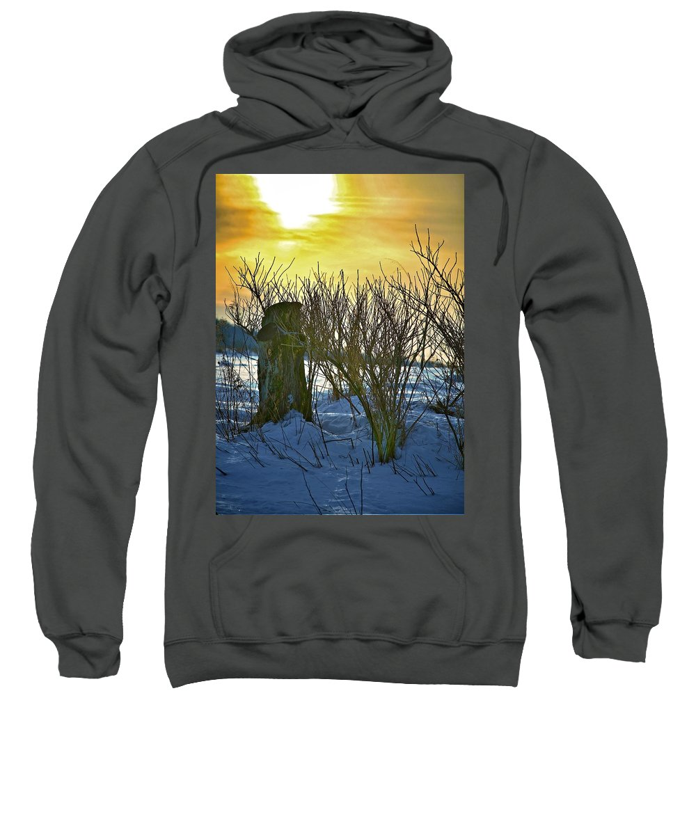 Sun Shine Nature Sweatshirt featuring the photograph The Rabbit Trail by Robert Pearson
