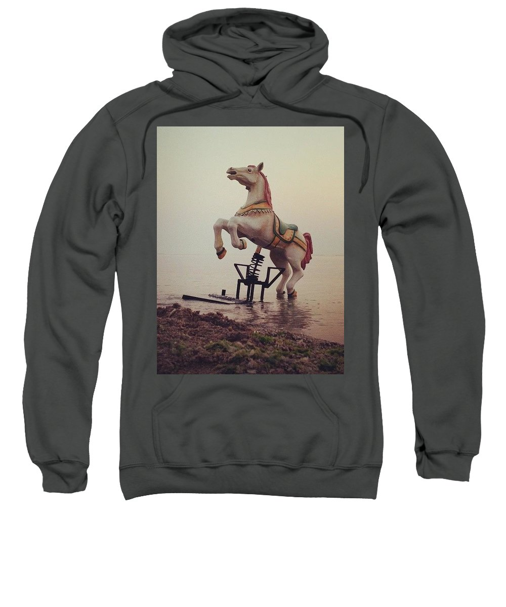 Horse Sweatshirt featuring the photograph The Sea Horse by Popa Constantin