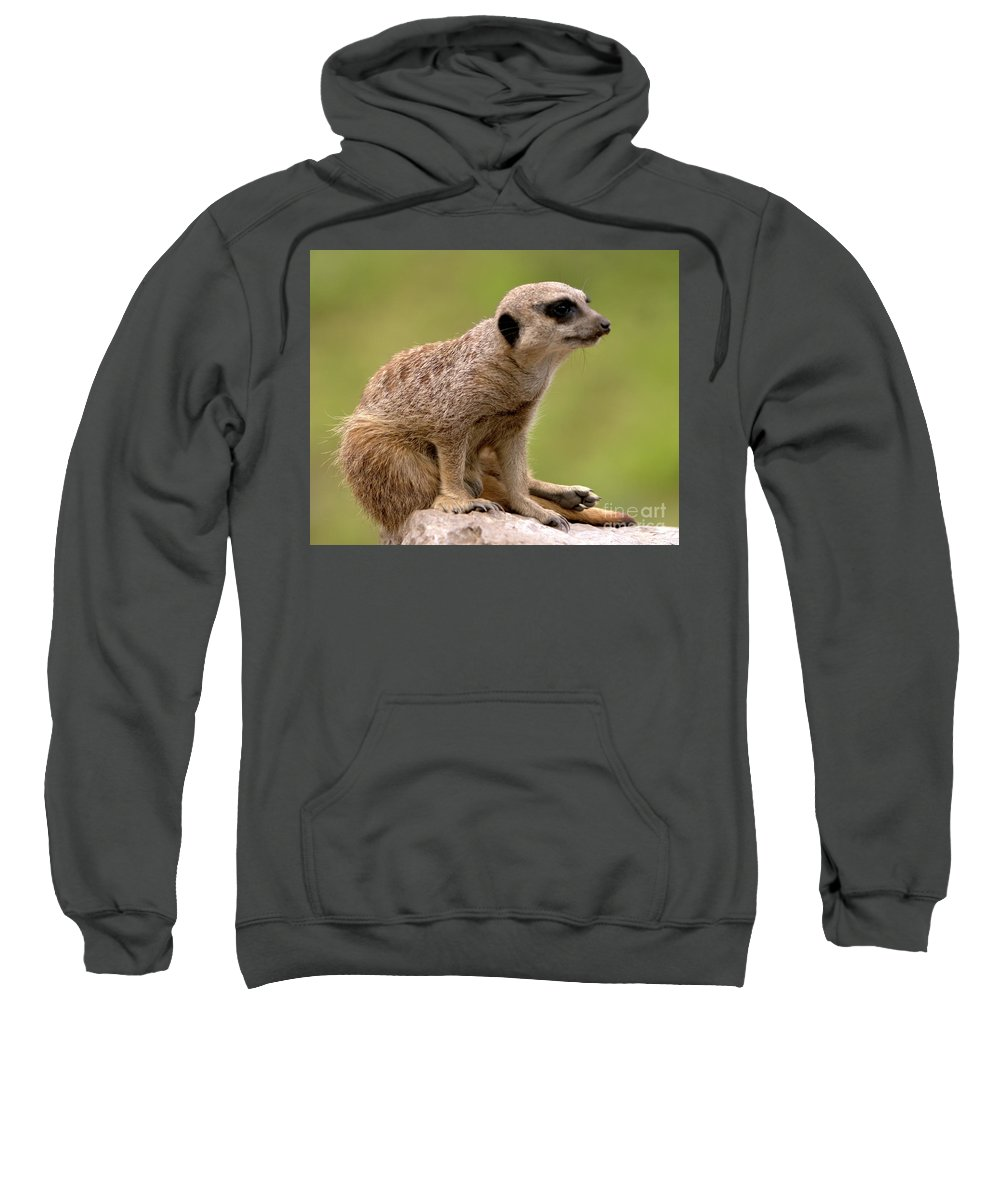 Small Sweatshirt featuring the photograph The Sentinel by Baggieoldboy