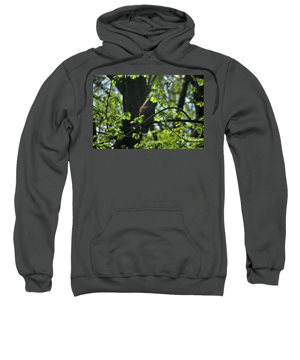 Nature Sweatshirt featuring the photograph The Shy Owl by Laura Birr Brown