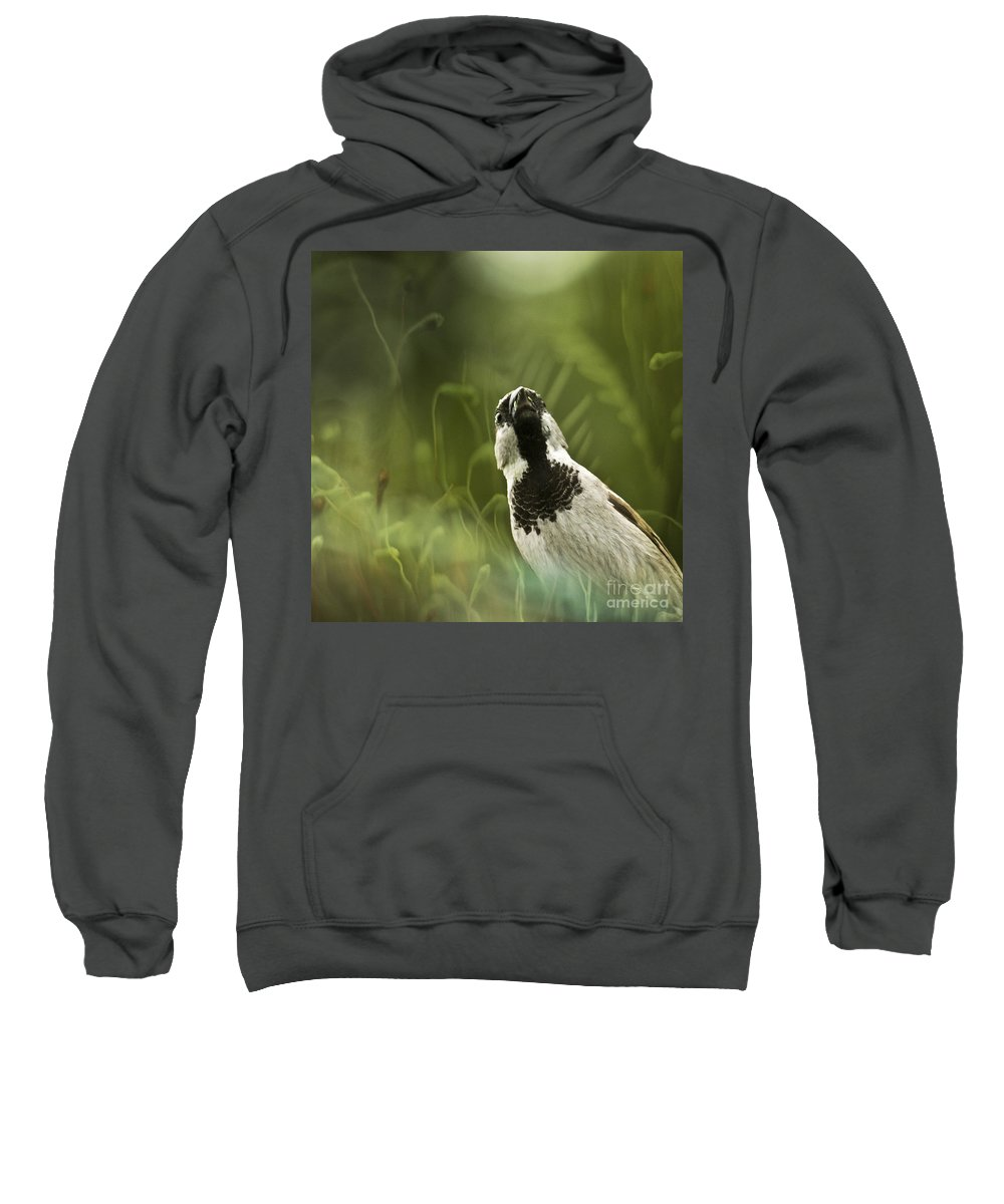 Sparrow Sweatshirt featuring the photograph The Sparrow by Angel Ciesniarska
