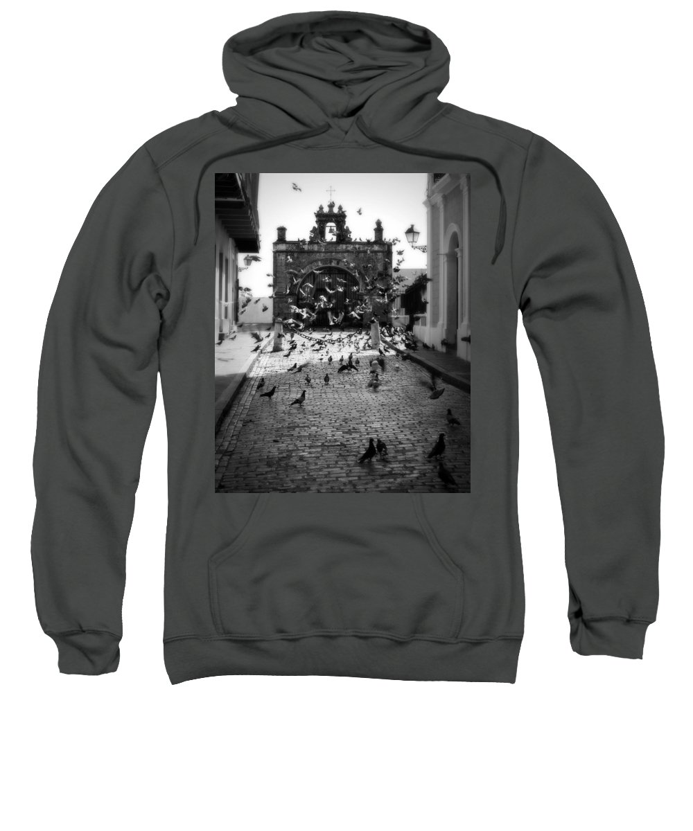 Pigeon Sweatshirt featuring the photograph The Street Pigeons by Perry Webster