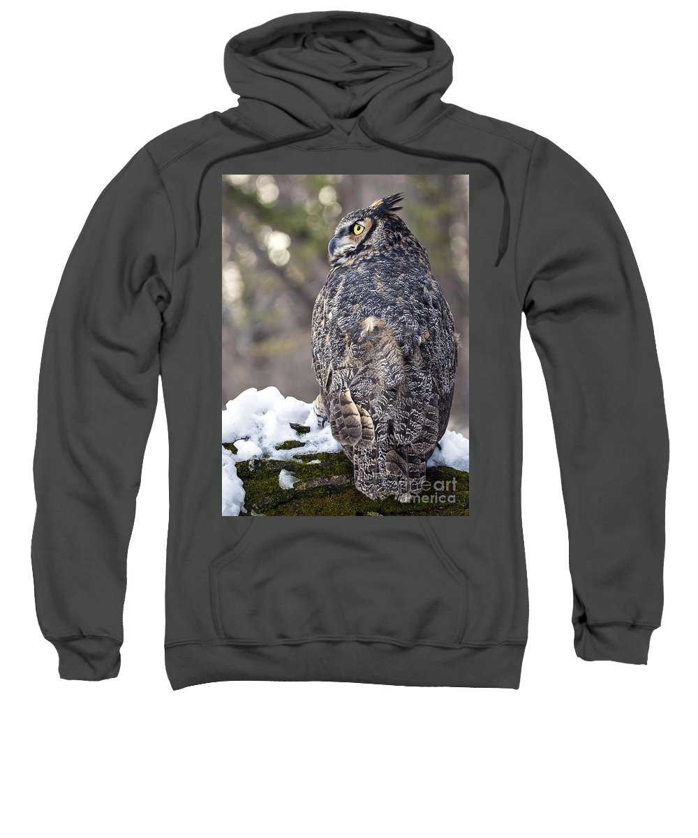 Great Horned Owl Sweatshirt featuring the photograph The Tiger Of The Sky by Emma England