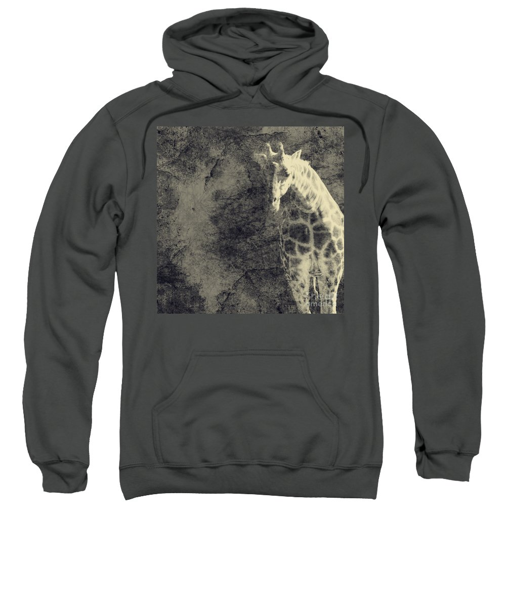 Dipasquale Sweatshirt featuring the photograph ...the Vast Expanses Of The Earth by Dana DiPasquale