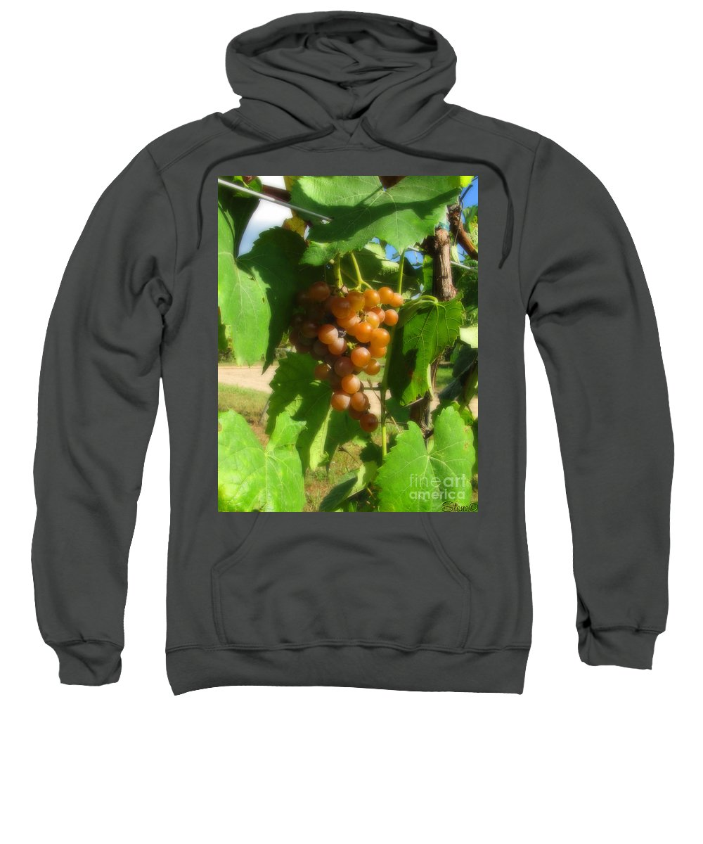 Grapes Sweatshirt featuring the photograph The Vineyard by September Stone