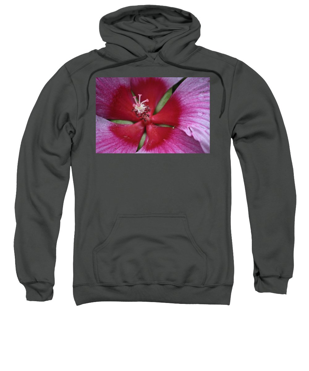 Hibiscus Sweatshirt featuring the photograph The Visitor by Teresa Mucha