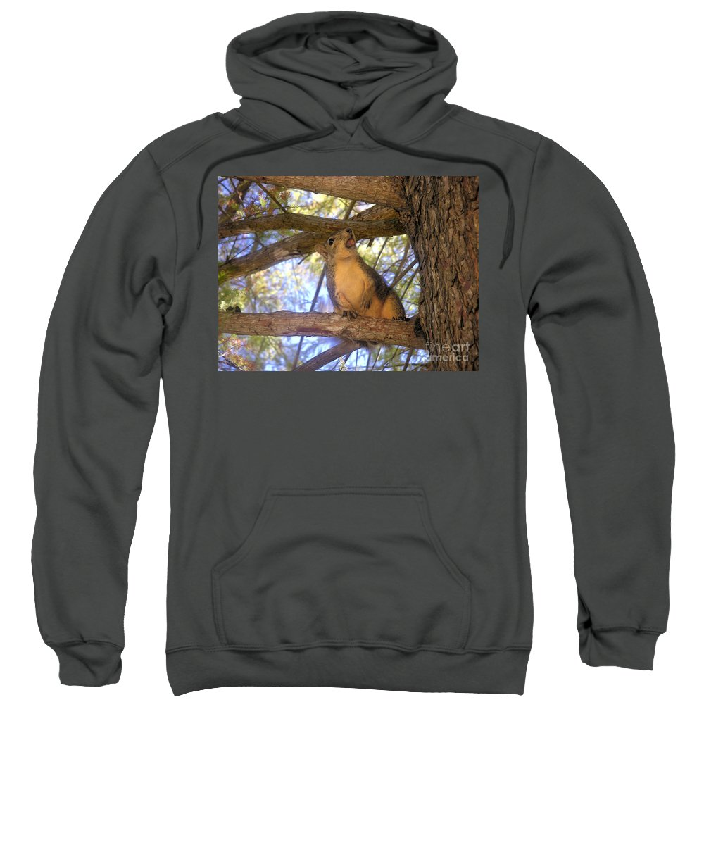 Nature Sweatshirt featuring the photograph The Winner by Lucyna A M Green