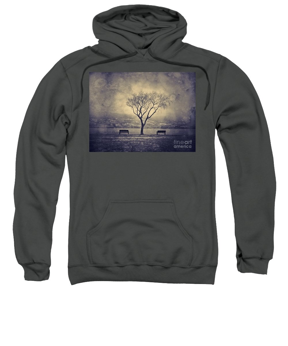 Texture Sweatshirt featuring the photograph The Winter And The Benches by Tara Turner