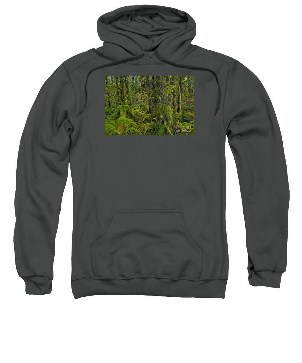 Sweatshirt featuring the photograph Thick Rainforest by Adam Jewell