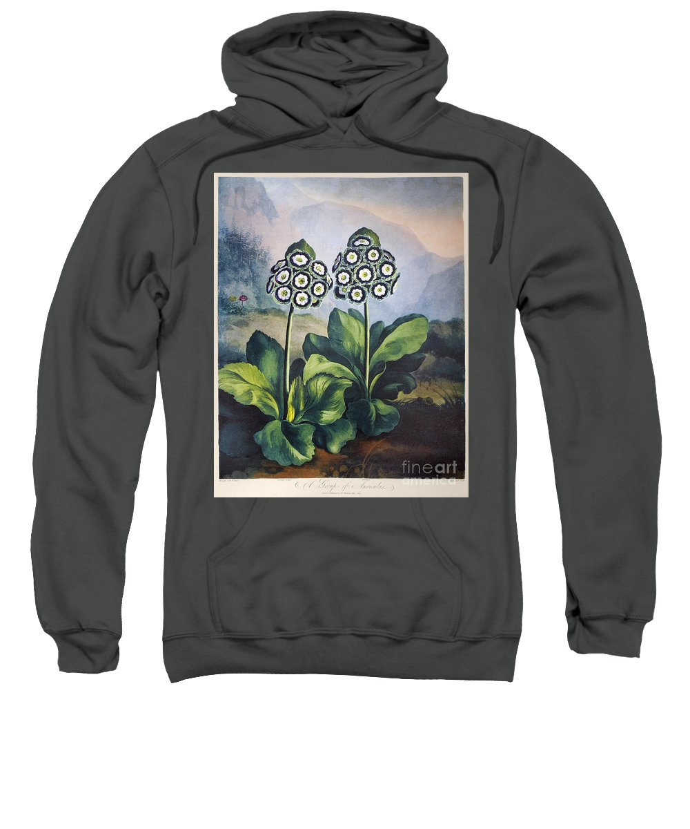 1807 Sweatshirt featuring the photograph Thornton: Auriculas by Granger