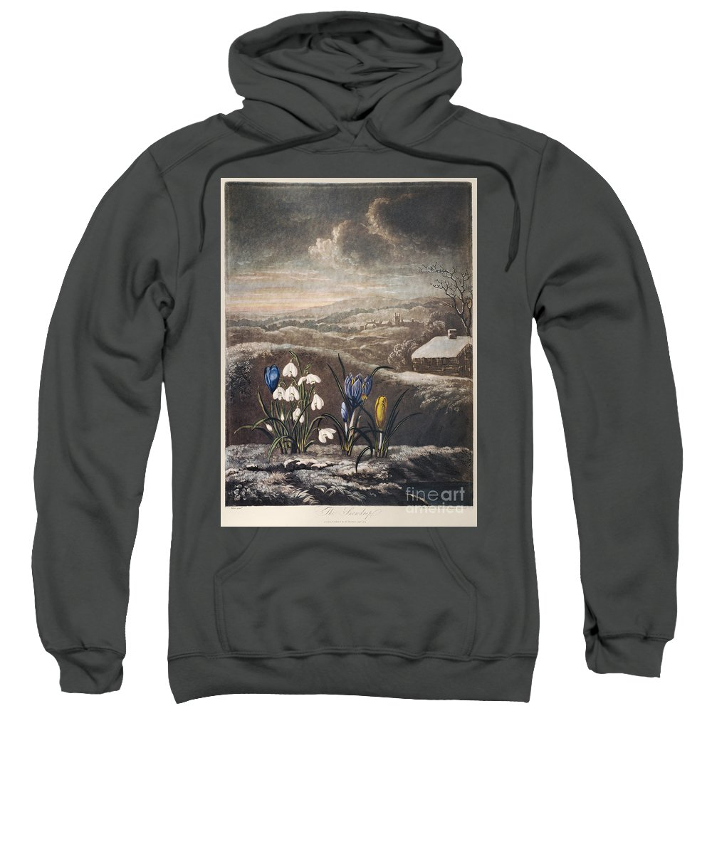 1799 Sweatshirt featuring the photograph Thornton: Crocusi by Granger
