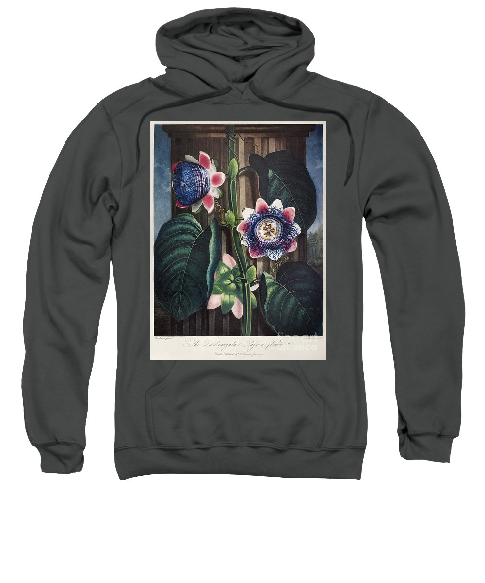 1802 Sweatshirt featuring the photograph Thornton: Passion-flower by Granger