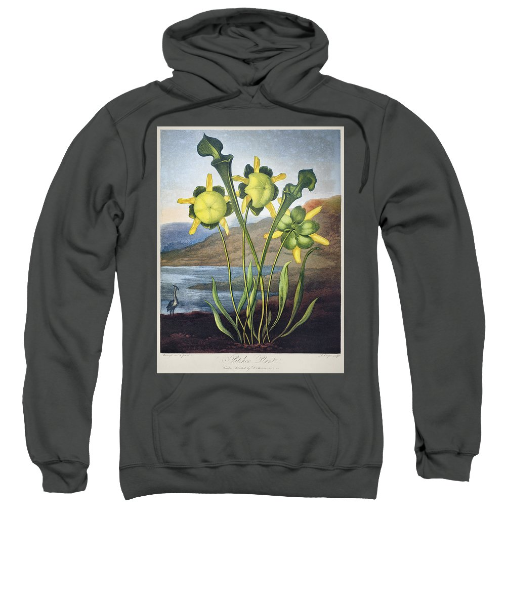 1803 Sweatshirt featuring the photograph Thornton: Pitcher Plant by Granger