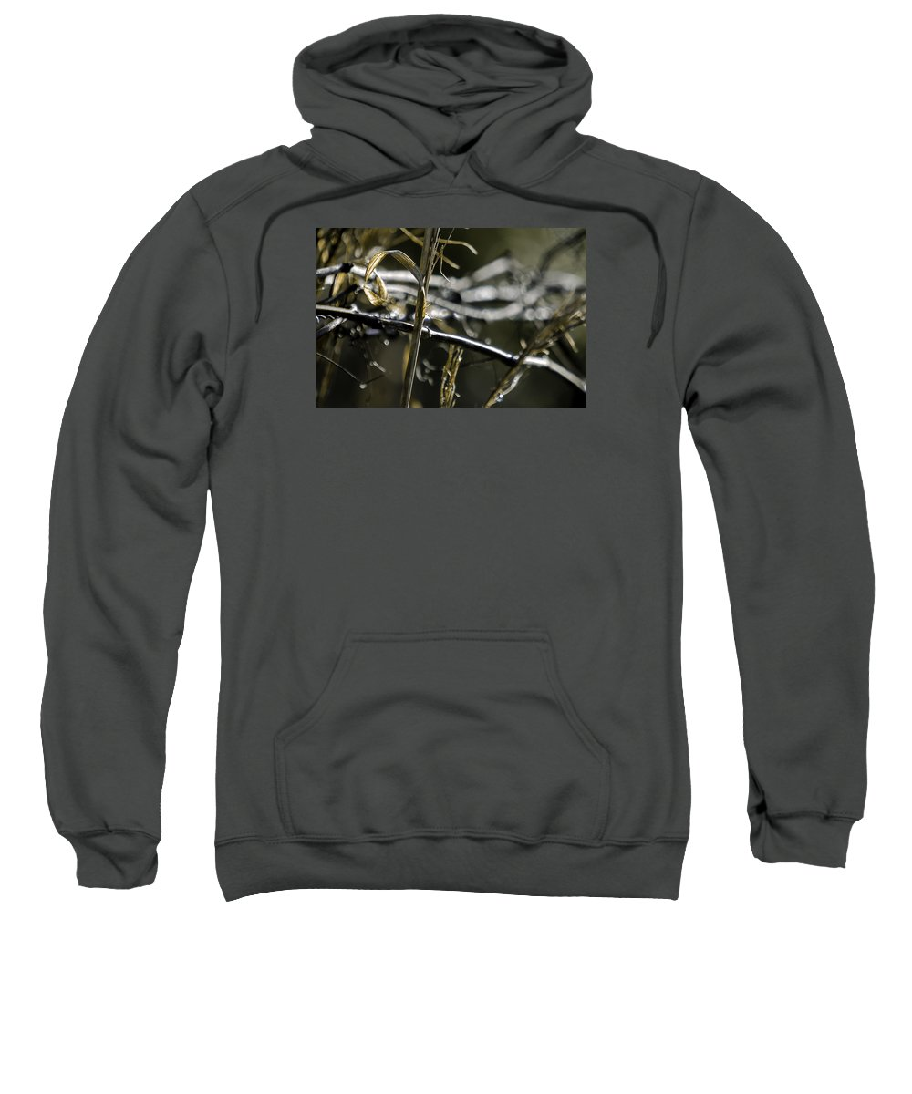 Landscape Sweatshirt featuring the photograph Thoughts by Alice Mary Herden