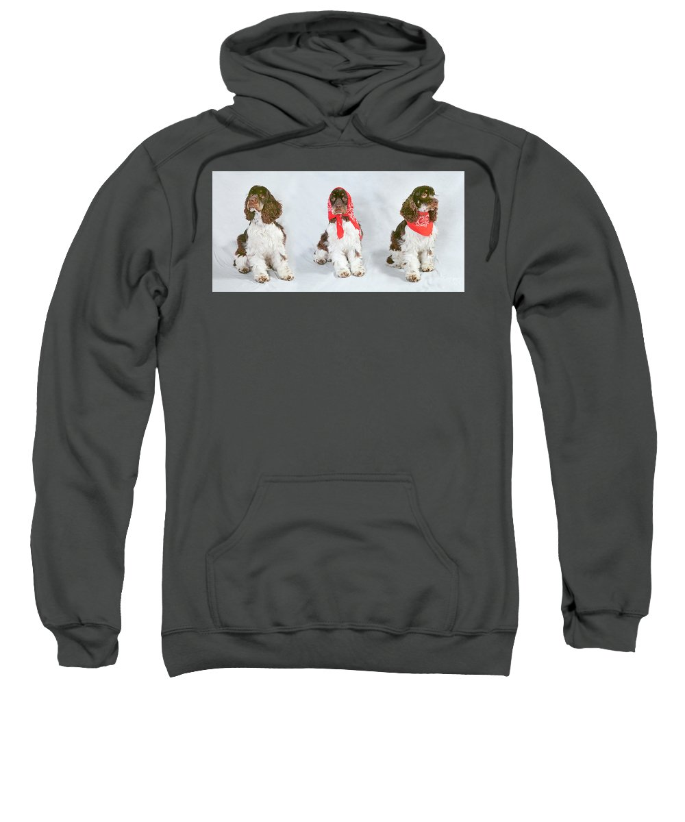 Dog Sweatshirt featuring the photograph Three Cockers by Buddy Mays