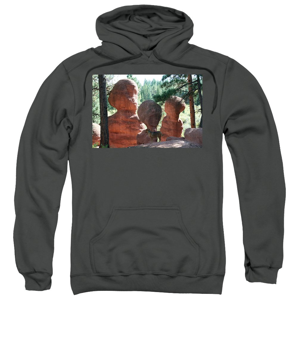 Stone Sweatshirt featuring the photograph Three Wise Men And A Dog by Ric Bascobert
