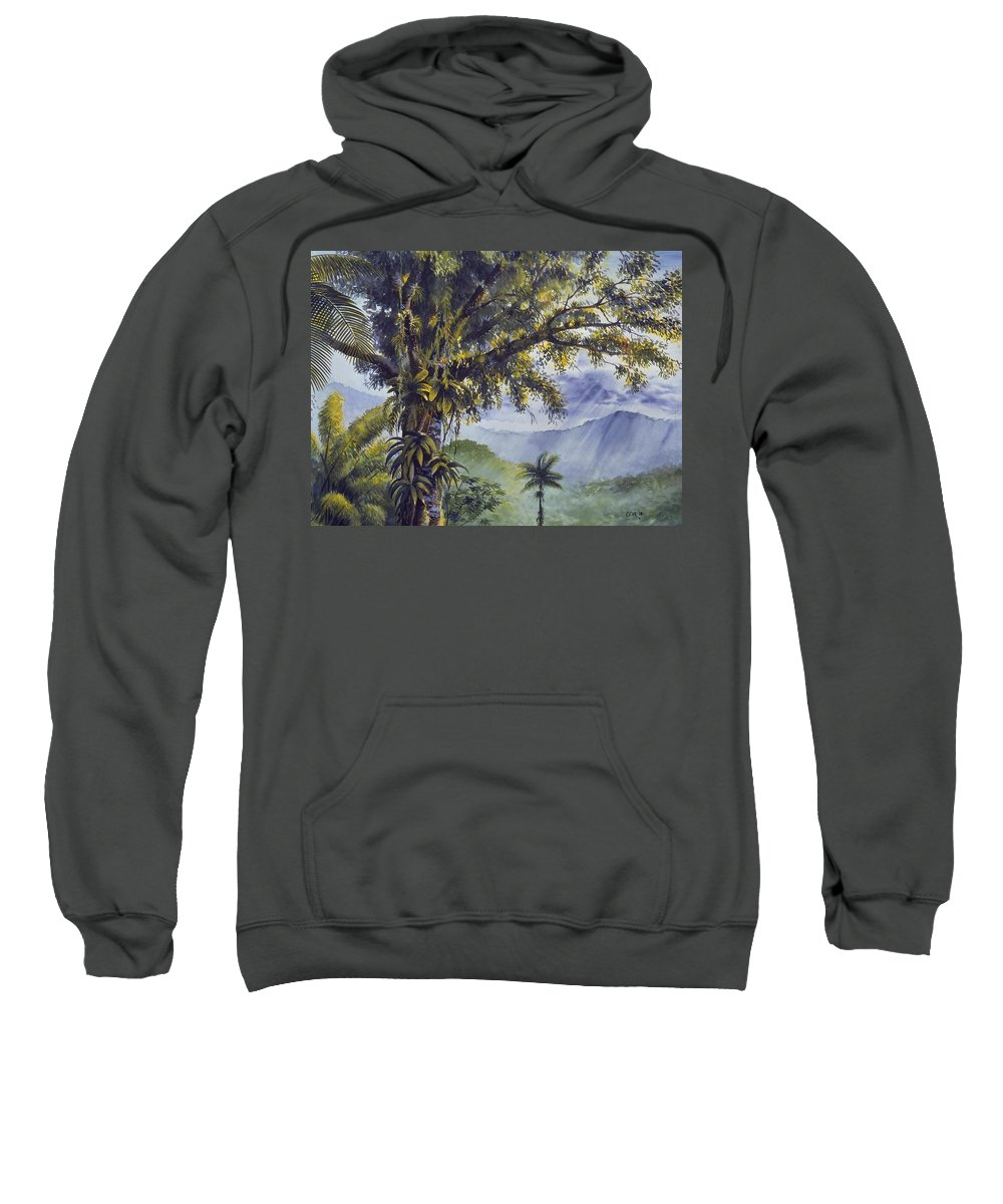 Chris Cox Sweatshirt featuring the painting Through The Canopy by Christopher Cox