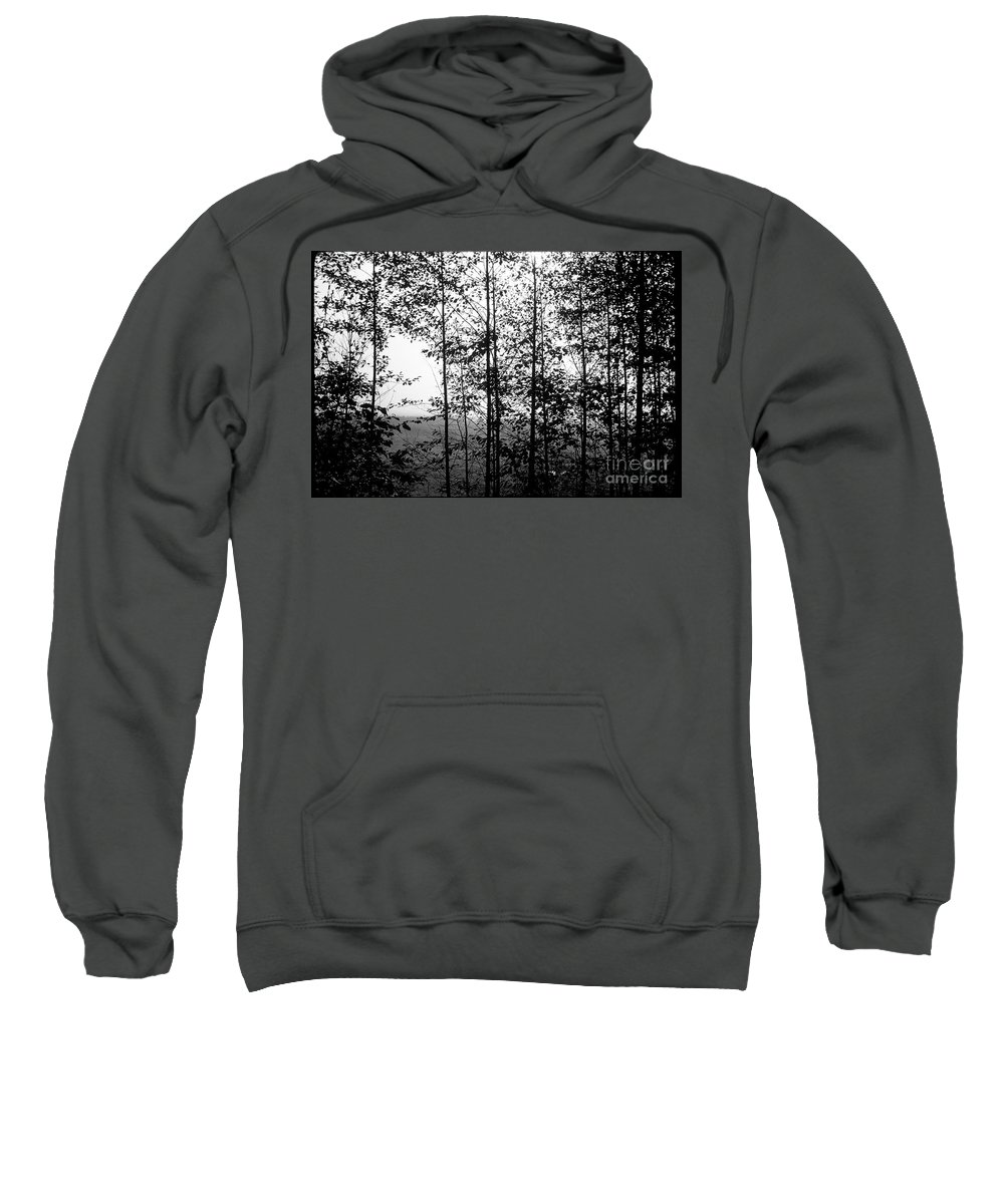 Trees Sweatshirt featuring the photograph Through The Spring Forest by Michael Ziegler