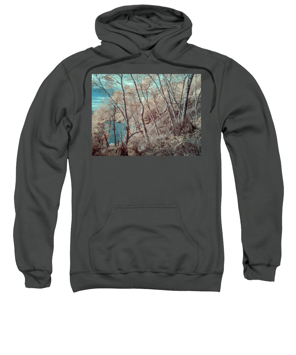 Trees Sweatshirt featuring the photograph Through The Trees In Infrared by Greg Nyquist