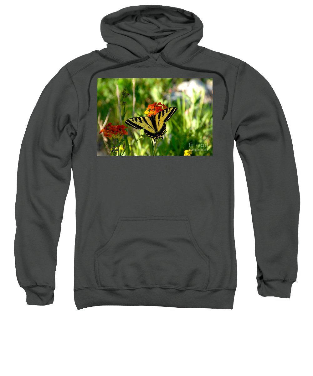 Tiger Tail Butterfly Sweatshirt featuring the photograph Tiger Tail Beauty by David Lee Thompson